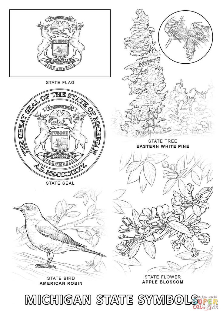 michigan state flag coloring page check more at httpsbo peepclubmichigan state symbols michigan state coloring flag page