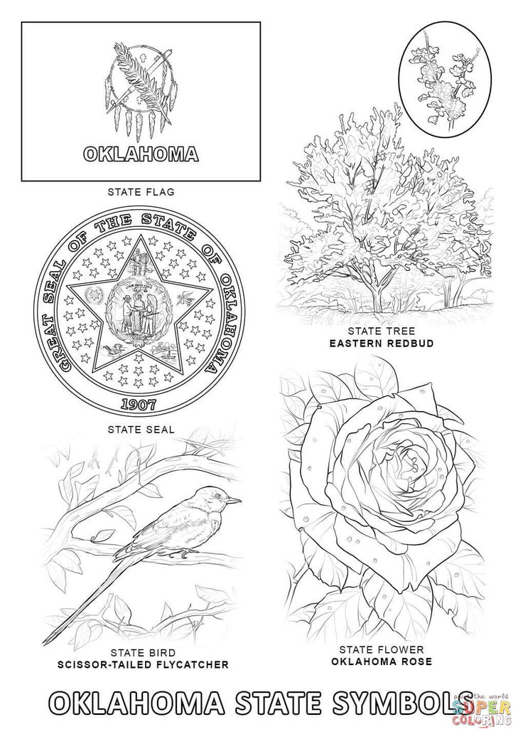 michigan state flag coloring page msu coloring pages at getcoloringscom free printable flag coloring michigan page state