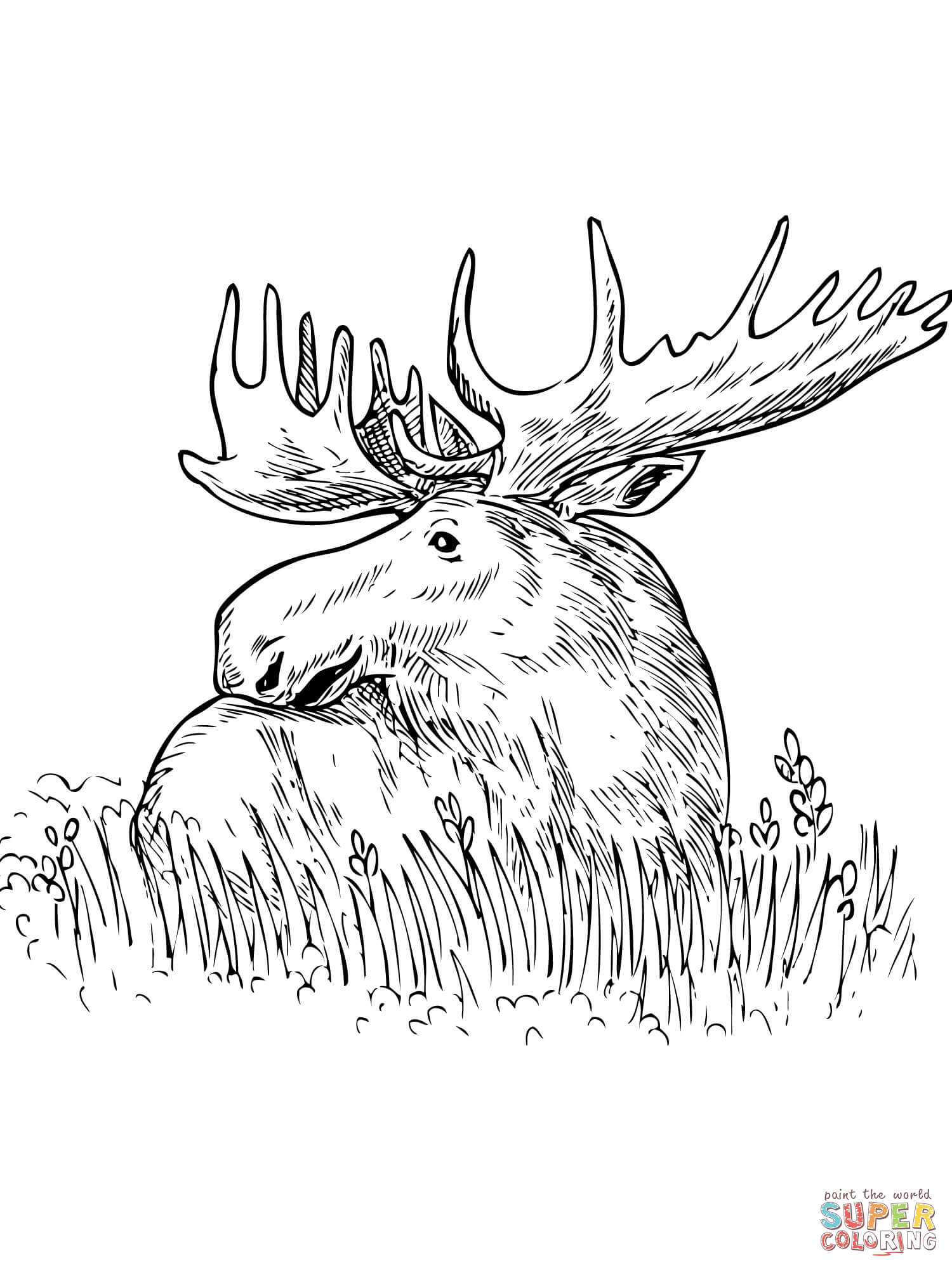 moose outline moose coloring pages to download and print for free moose outline