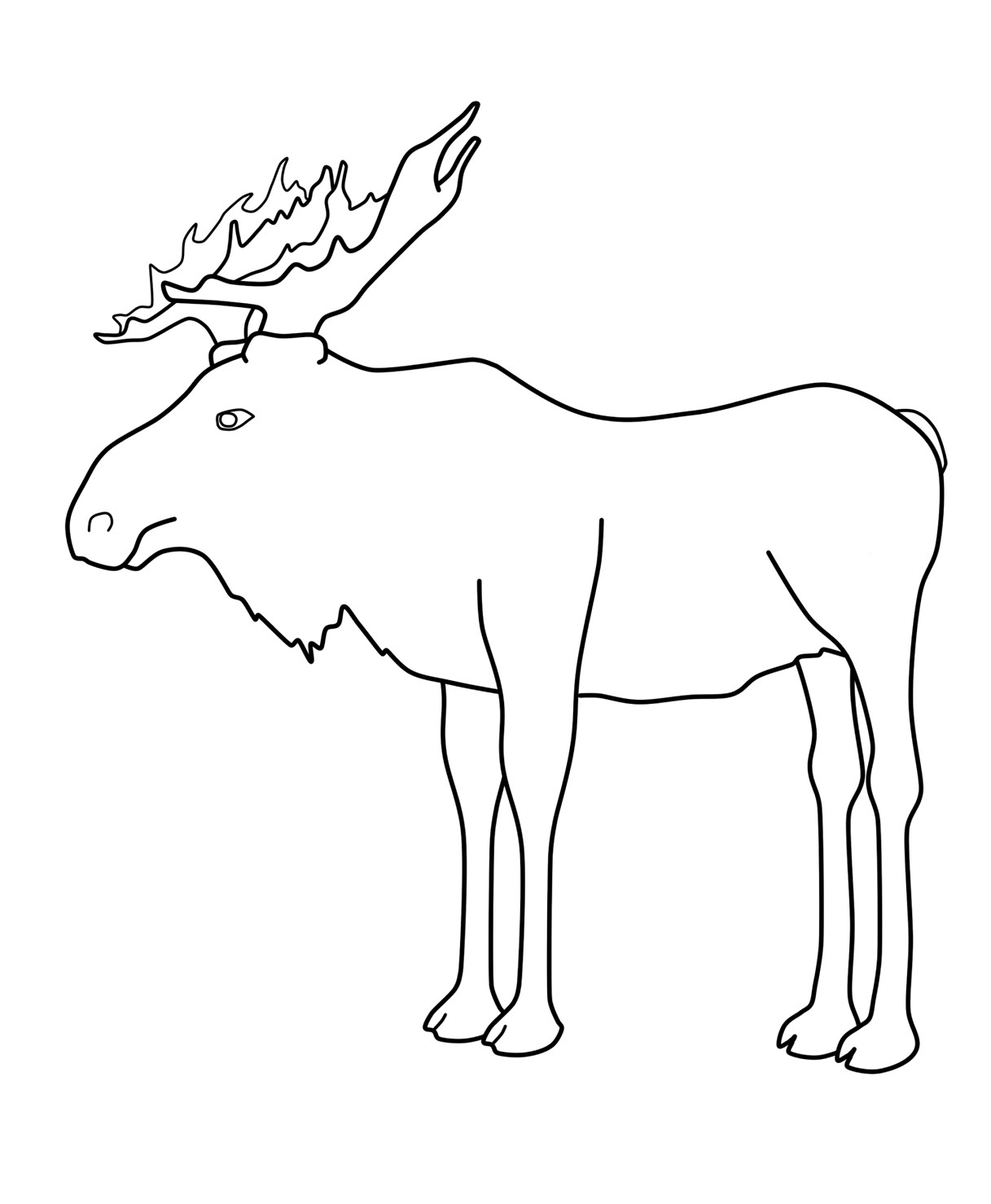 moose outline moose drawing at getdrawingscom free for personal use outline moose