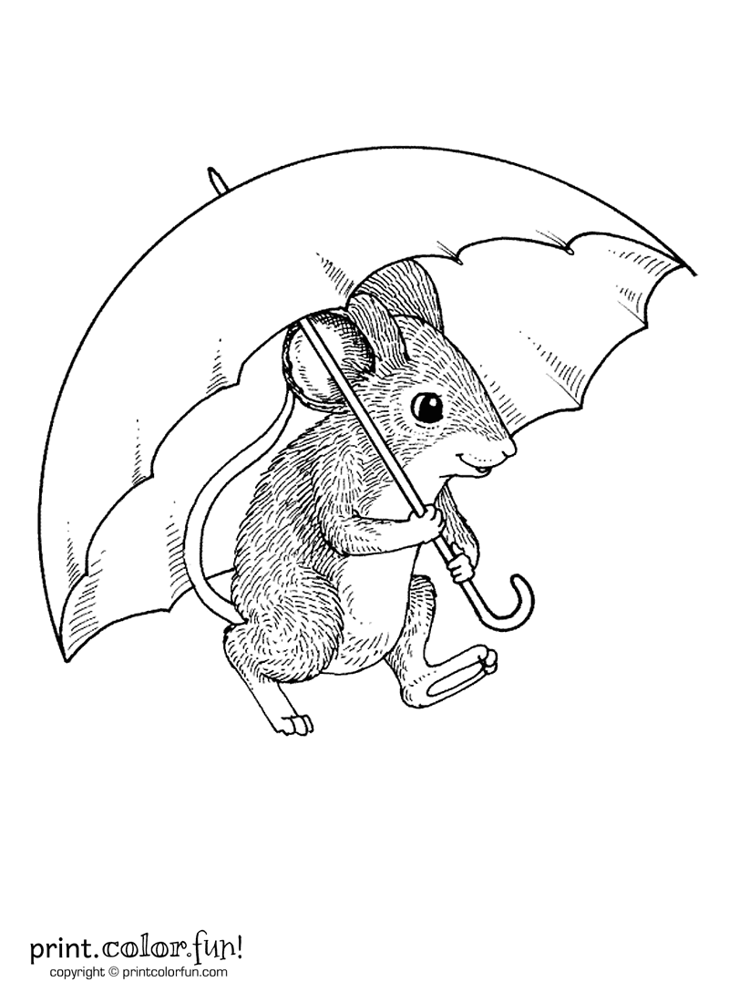 mouse pictures to color mouse with an umbrella coloring page print color fun pictures mouse color to