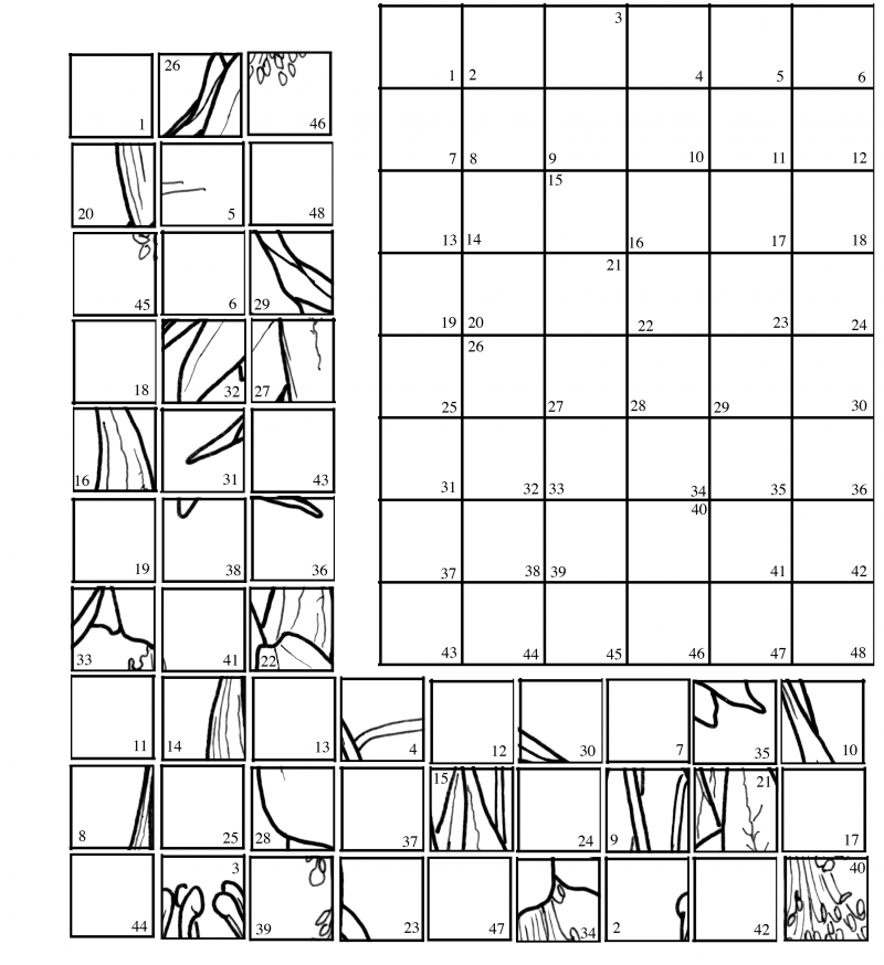mystery picture coloring grid mystery grid coloring pages sketch coloring page coloring grid picture mystery