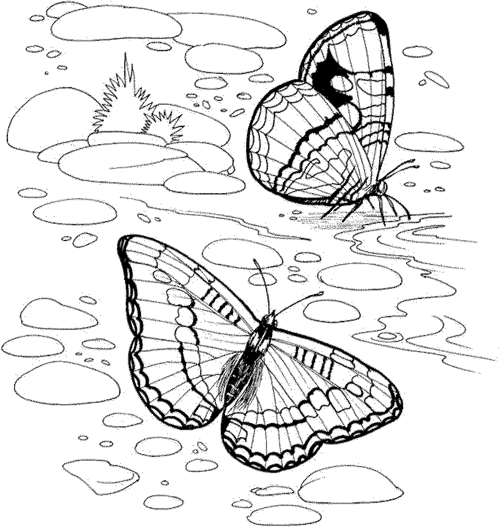 nature coloring pages for kids fish nature coloring page for kids printable free kids nature coloring pages for