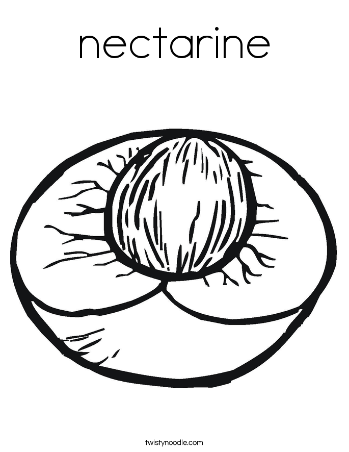 nectarine color fruit coloring pages nectarine color