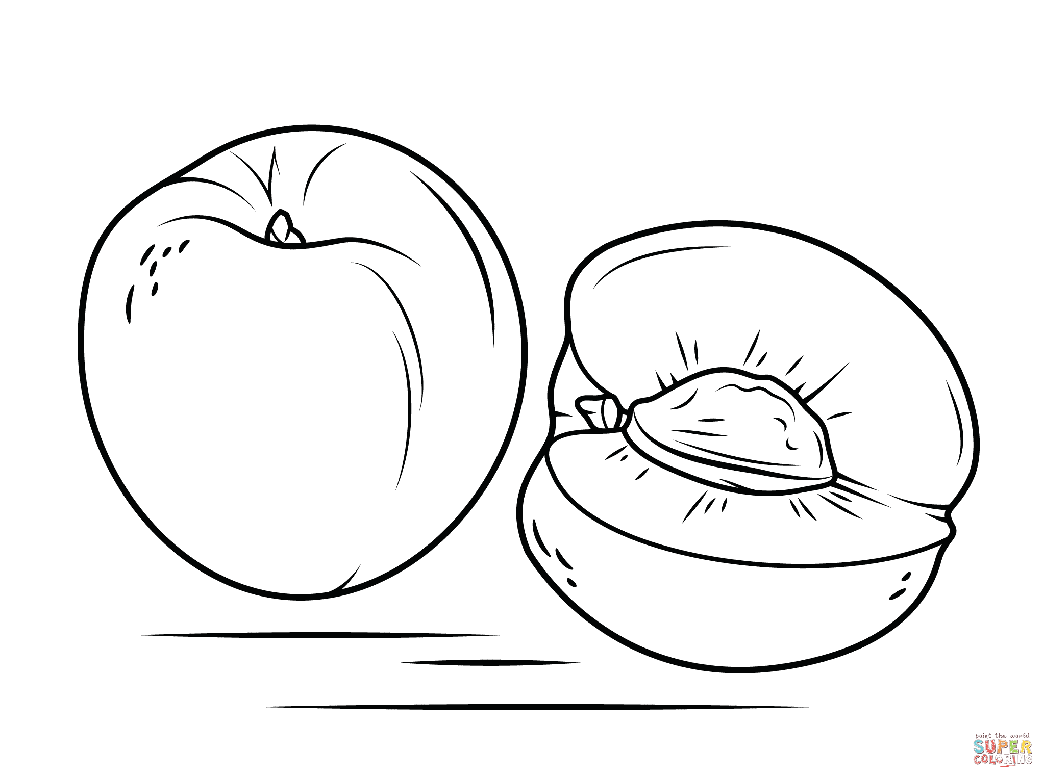 nectarine color whole and sliced nectarine coloring page free printable color nectarine