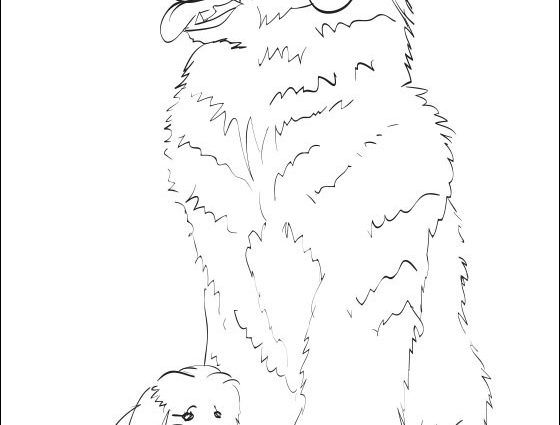 newfoundland dog coloring pages newfoundland coloring page super coloring coloring dog newfoundland pages