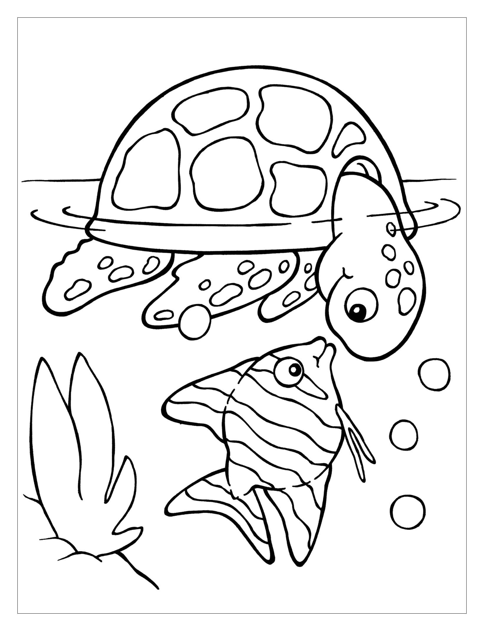 painted turtle coloring page free coloring page painted turtle coloring page page turtle painted coloring