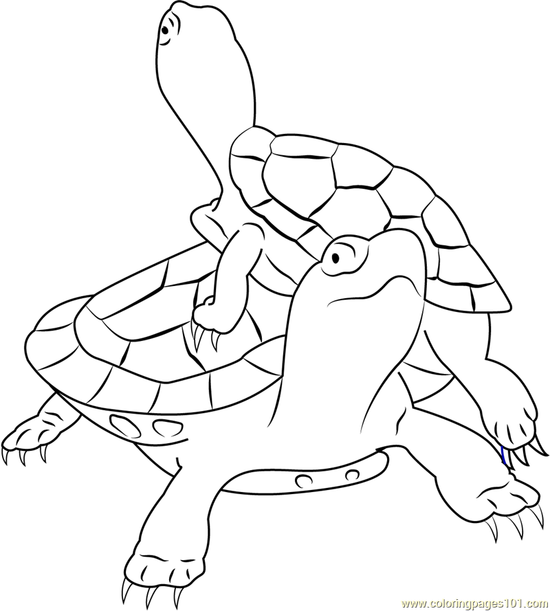 painted turtle coloring page painted turtle coloring page free turtle coloring pages page coloring turtle painted
