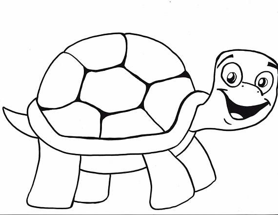 painted turtle coloring page painted turtle printout enchantedlearningcom page coloring turtle painted