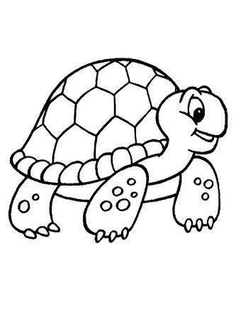 painted turtle coloring page the 25 best turtle coloring pages ideas on pinterest coloring turtle page painted