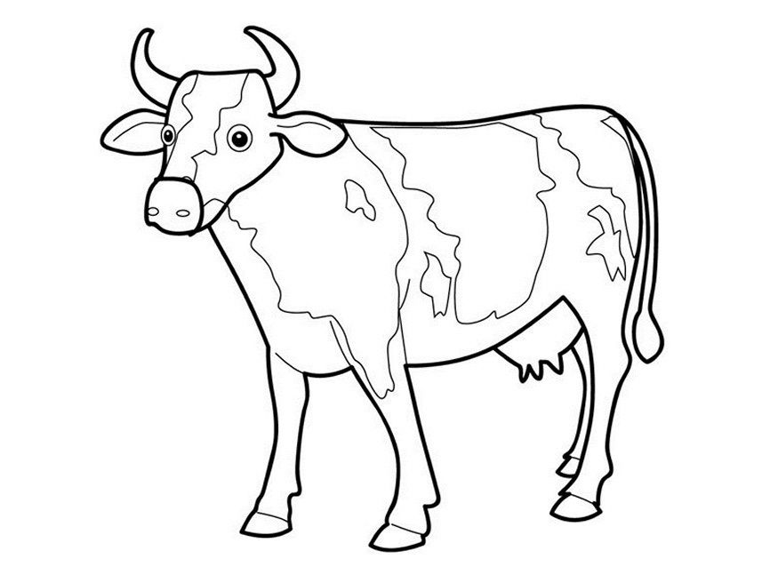 picture of a cow to colour printable drawing for kids to colour cow coloring pages to picture colour of a cow