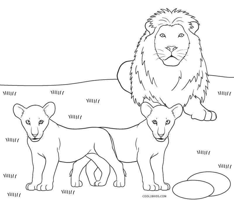 picture of lion coloring page coloring ville page picture of coloring lion