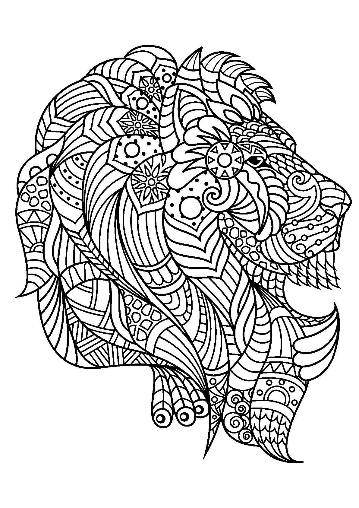 picture of lion coloring page fantasy lion printable adult coloring page from favoreads lion picture coloring page of