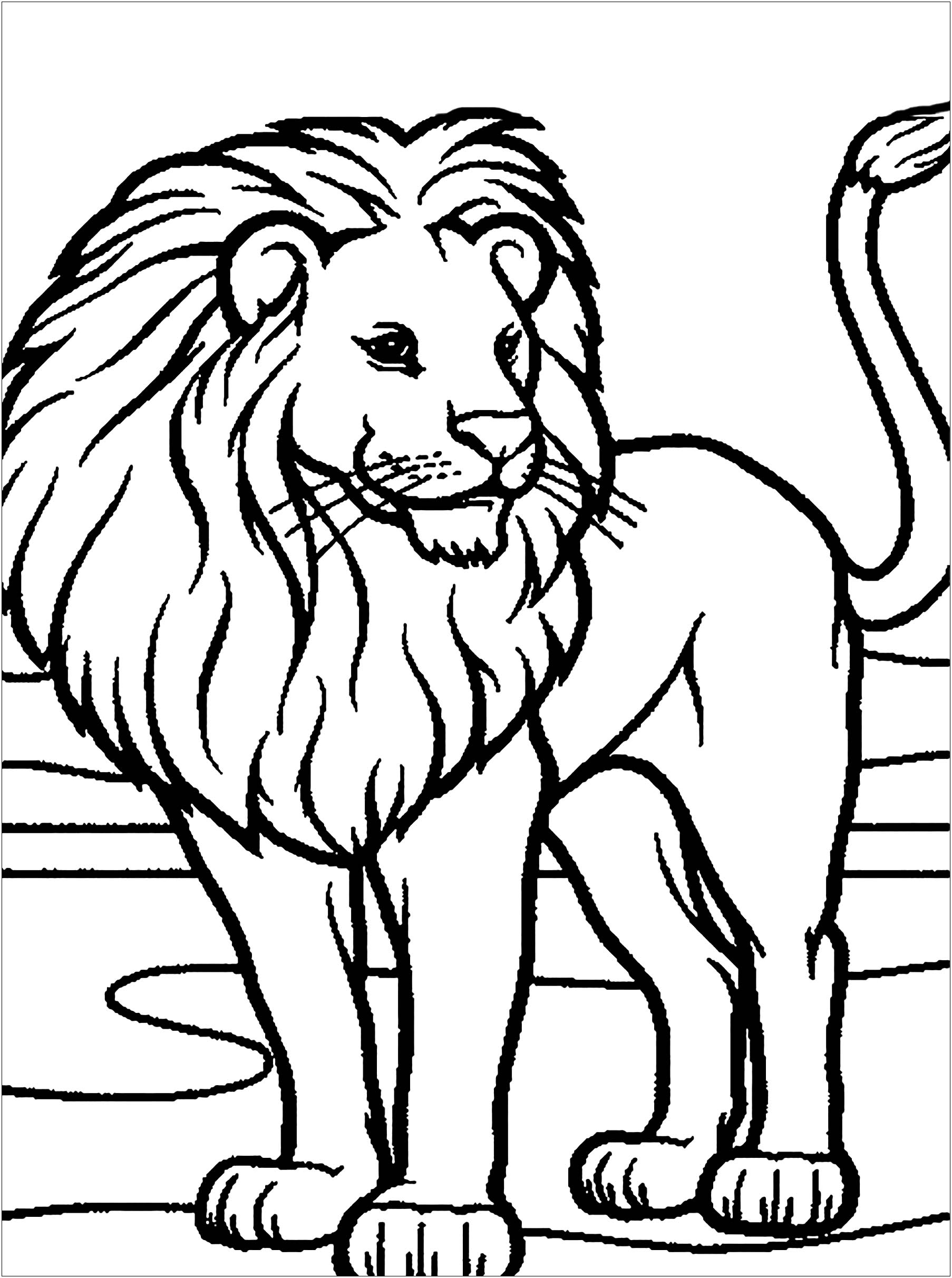picture of lion coloring page lion coloring pages clipart and other free printable page coloring lion picture of