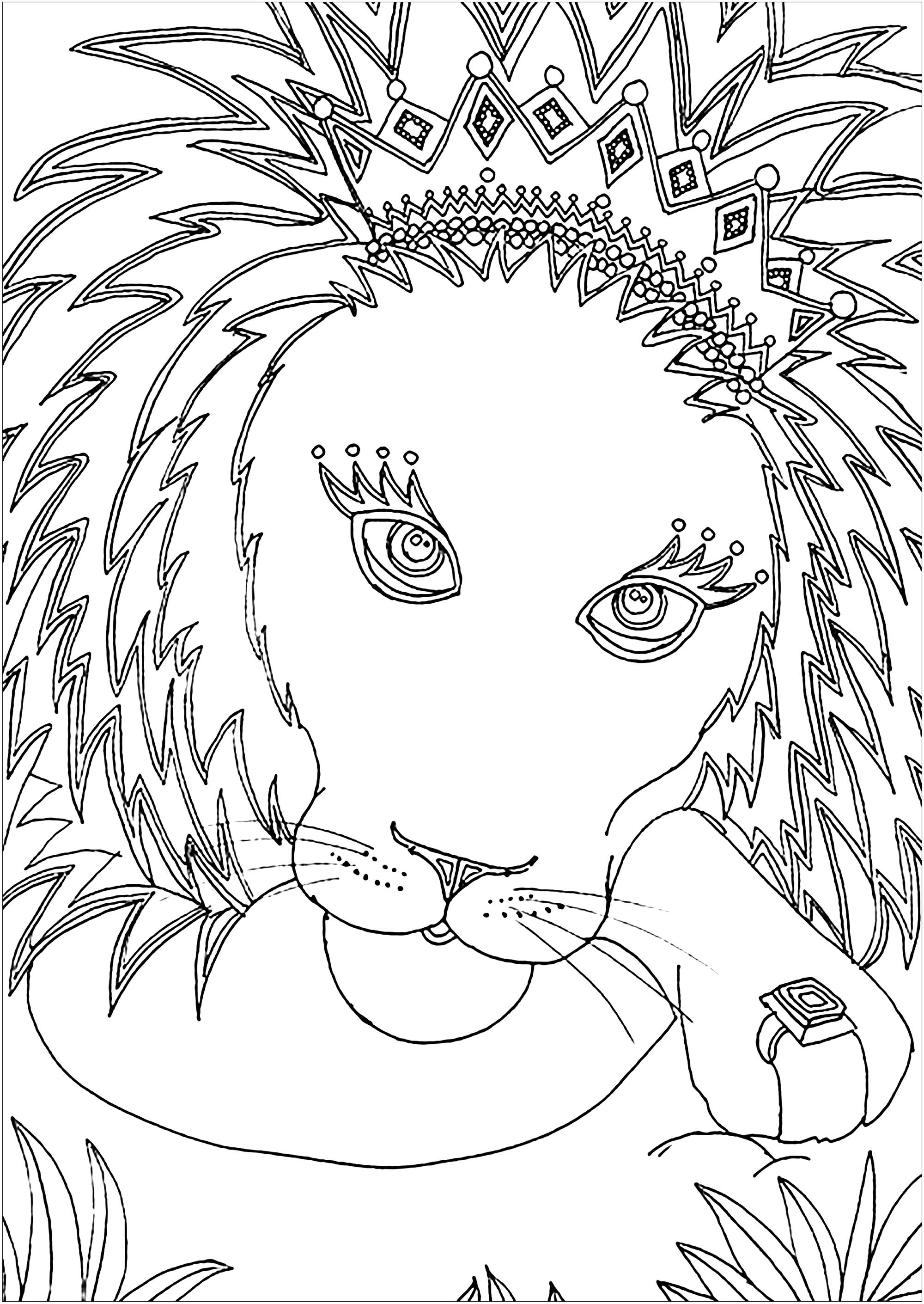 picture of lion coloring page lion to download lion kids coloring pages of picture lion page coloring
