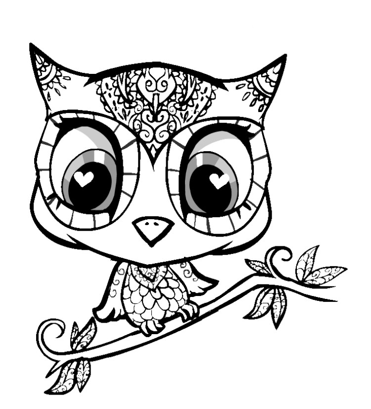 picture of owls to color bird coloring pages of owls to picture color