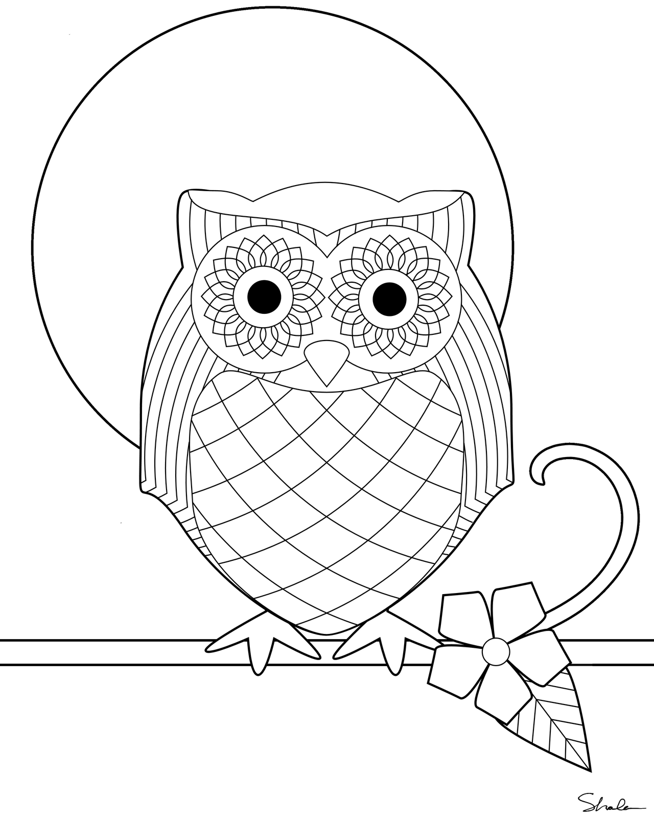 picture of owls to color don39t eat the paste owl coloring page to owls of picture color