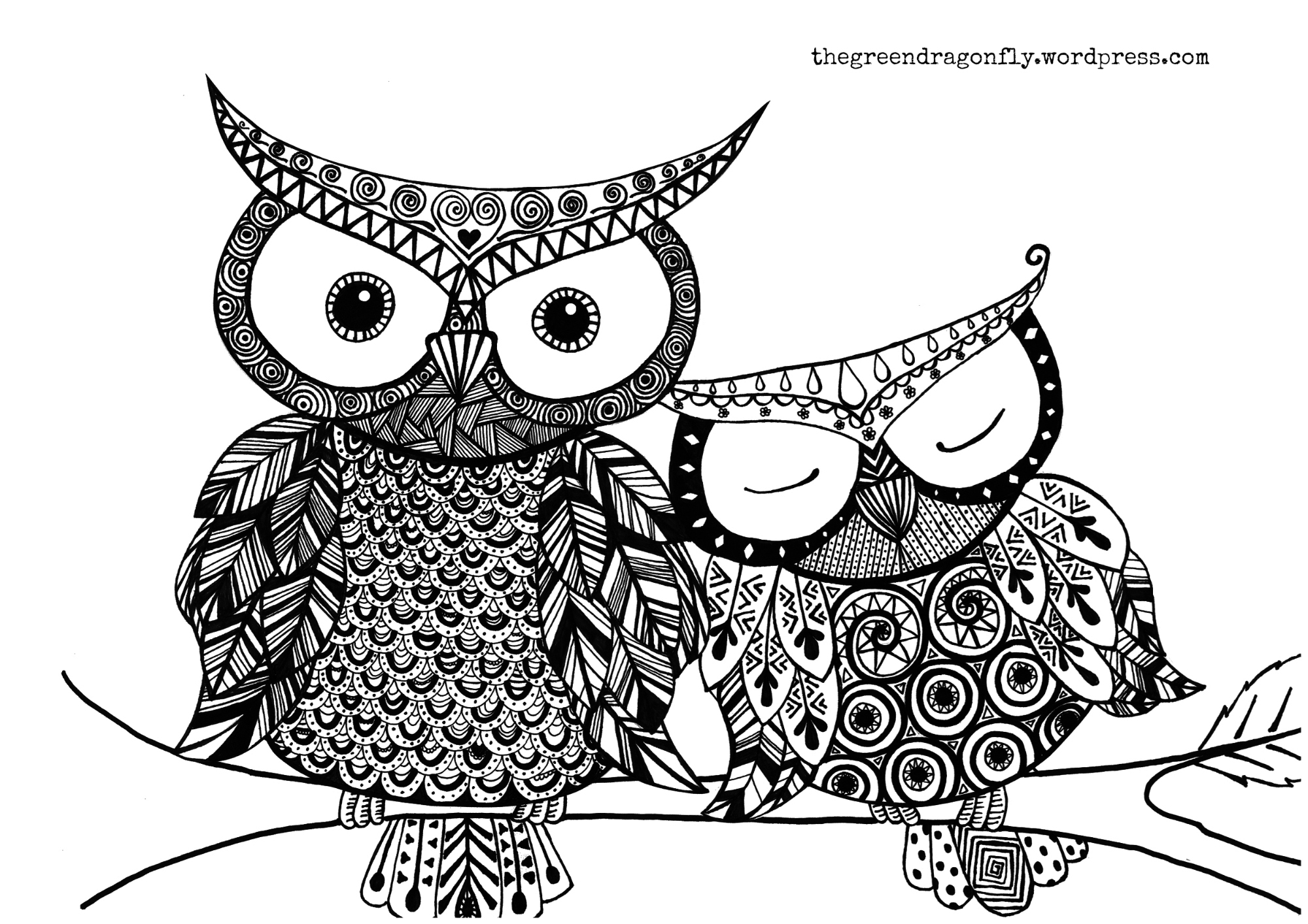 picture of owls to color girl owl coloring pages get coloring pages owls to picture color of