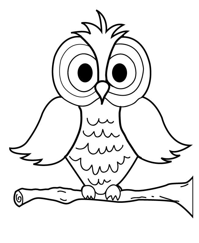picture of owls to color owl coloring pages picture to color of owls