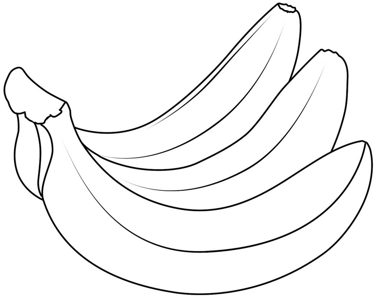 pictures of bananas to print coloring pages banana 11 food fruits gt bananas free of to bananas pictures print