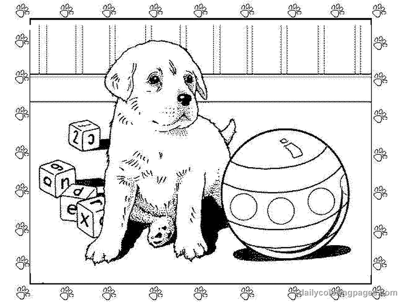 pictures of dogs and puppies to colour in small dog coloring pages coloring home and puppies pictures of dogs in to colour