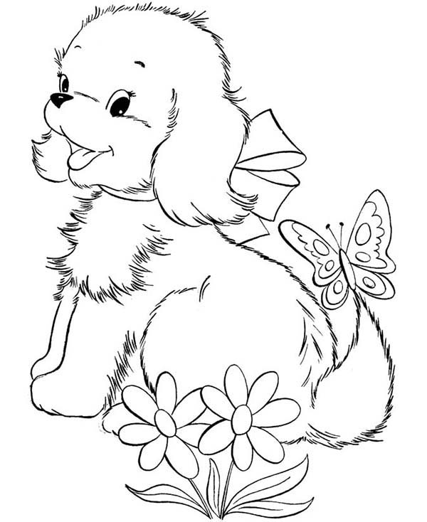 pictures of dogs and puppies to colour in thundermans coloring pages at getcoloringscom free pictures and to colour dogs of in puppies