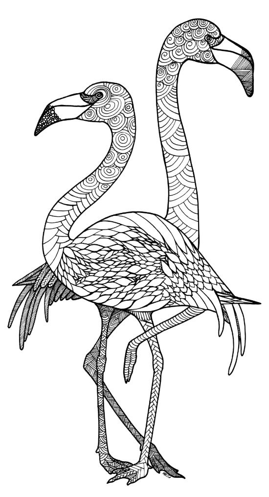 pictures of flamingos to color flamingo coloring page free printable coloring video color to pictures flamingos of