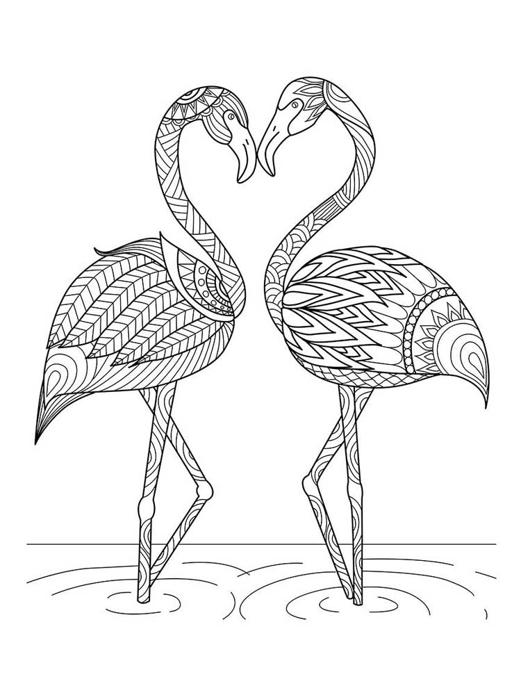 pictures of flamingos to color flamingos canvas print bird coloring pages flamingo color of flamingos pictures to