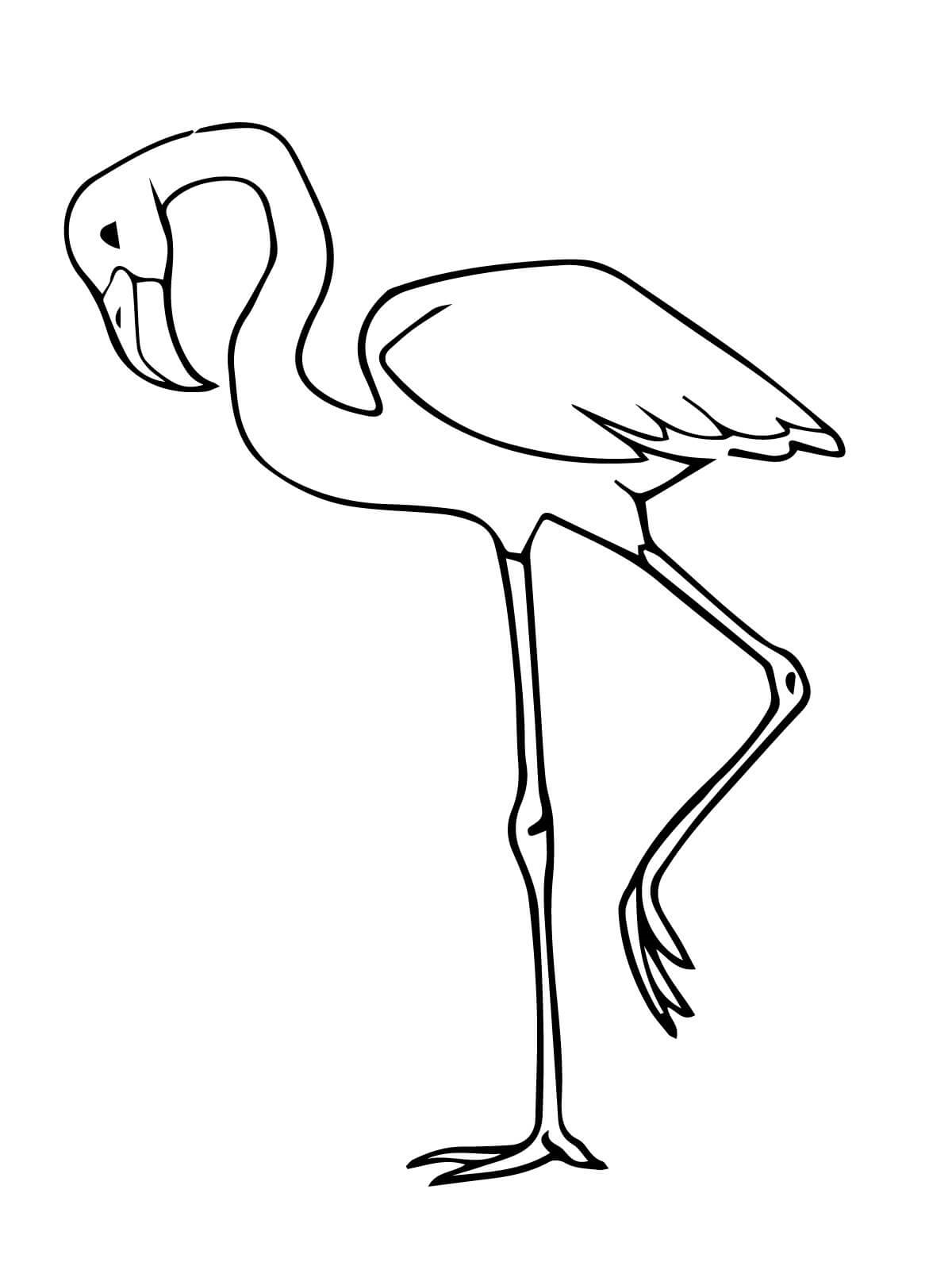 pictures of flamingos to color simple flamingo coloring page free printable coloring to flamingos color pictures of
