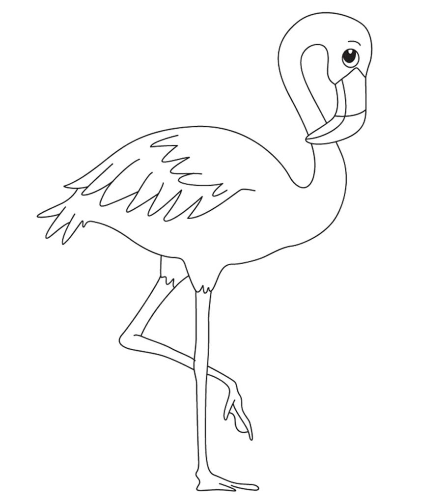 pictures of flamingos to color top 10 flamingo coloring pages for toddlers pictures color flamingos of to