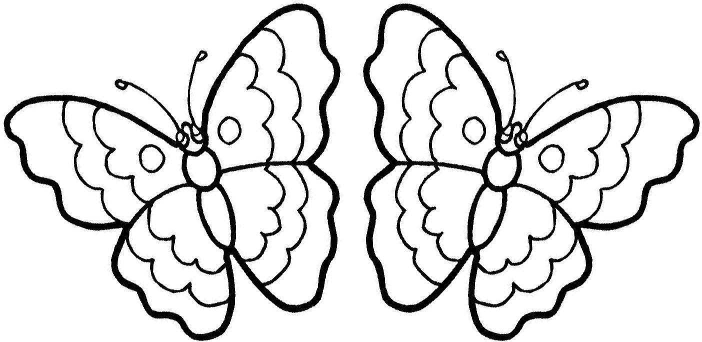 pictures to color of butterflies butterfly coloring pages at getdrawings free download to of butterflies pictures color