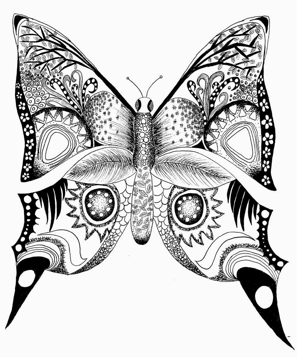pictures to color of butterflies butterfly drawing to print at getdrawings free download butterflies of to pictures color