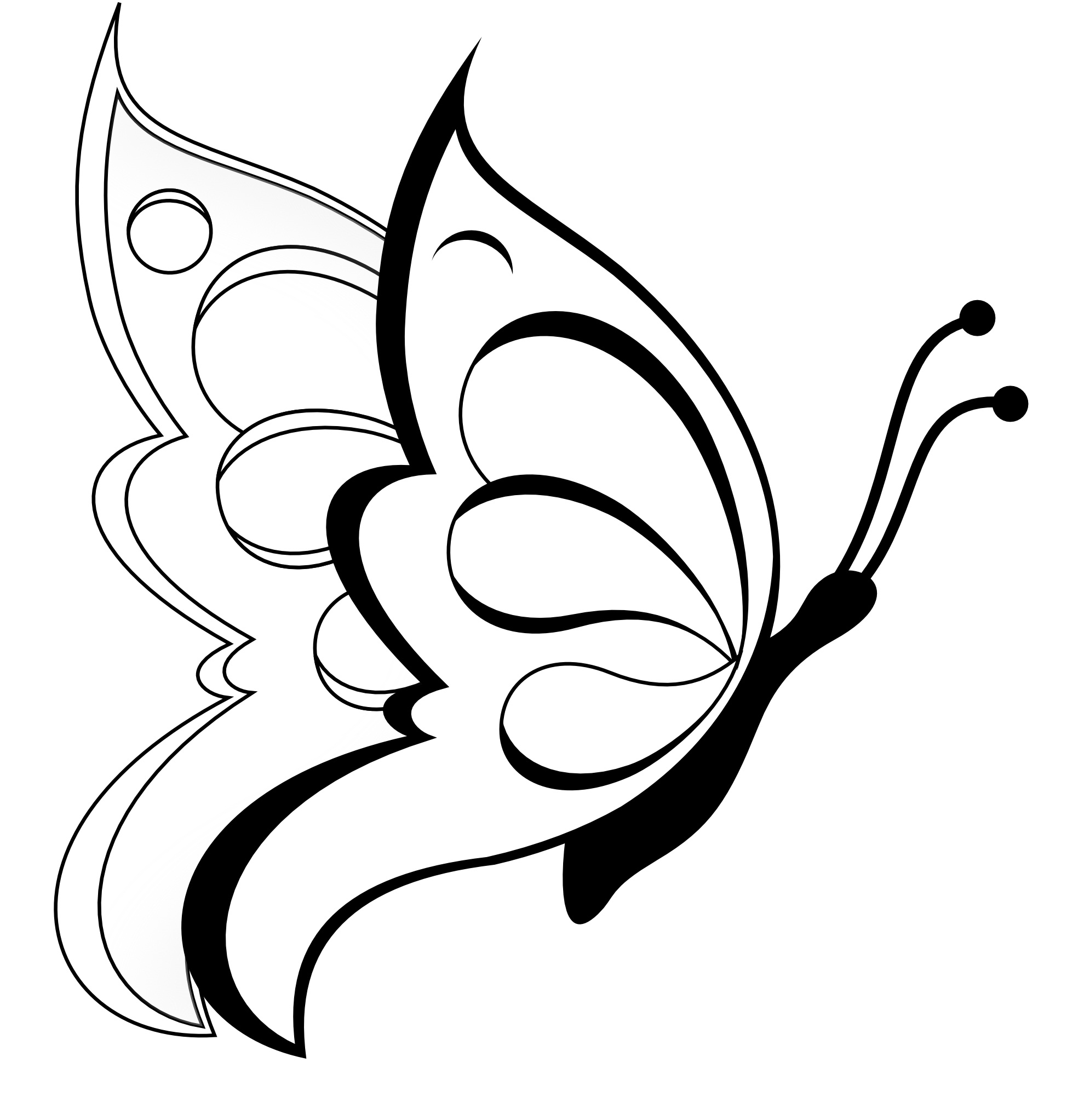 pictures to color of butterflies free printable butterfly coloring pages for kids color butterflies to pictures of