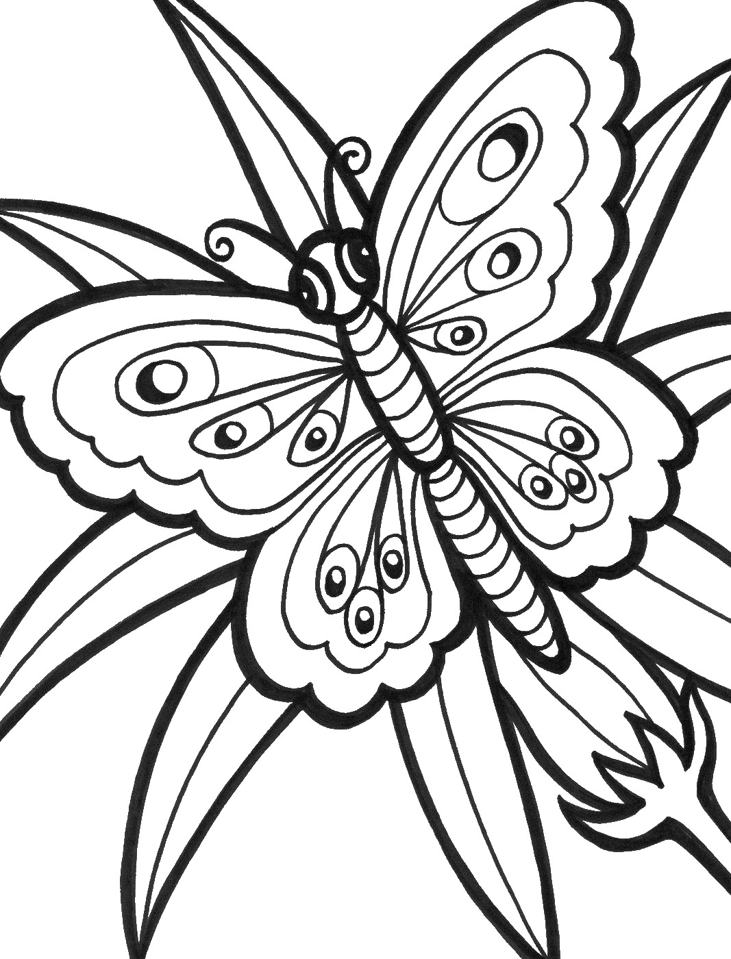 pictures to color of butterflies free printable butterfly coloring pages for kids of color to butterflies pictures