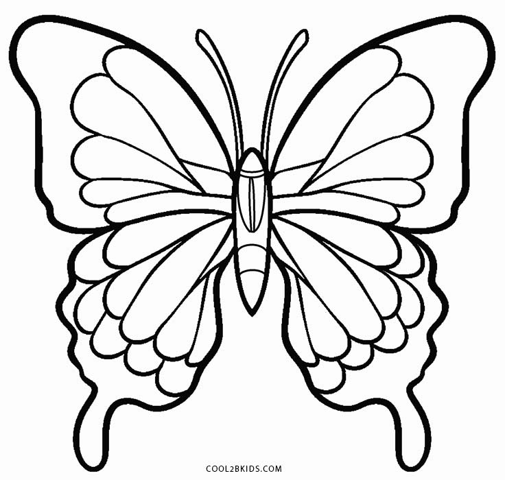 pictures to color of butterflies printable butterfly coloring pages for kids cool2bkids butterflies to of color pictures