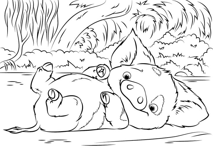 pig from moana coloring page pig pua from moana coloring page free coloring pages online pig moana page from coloring