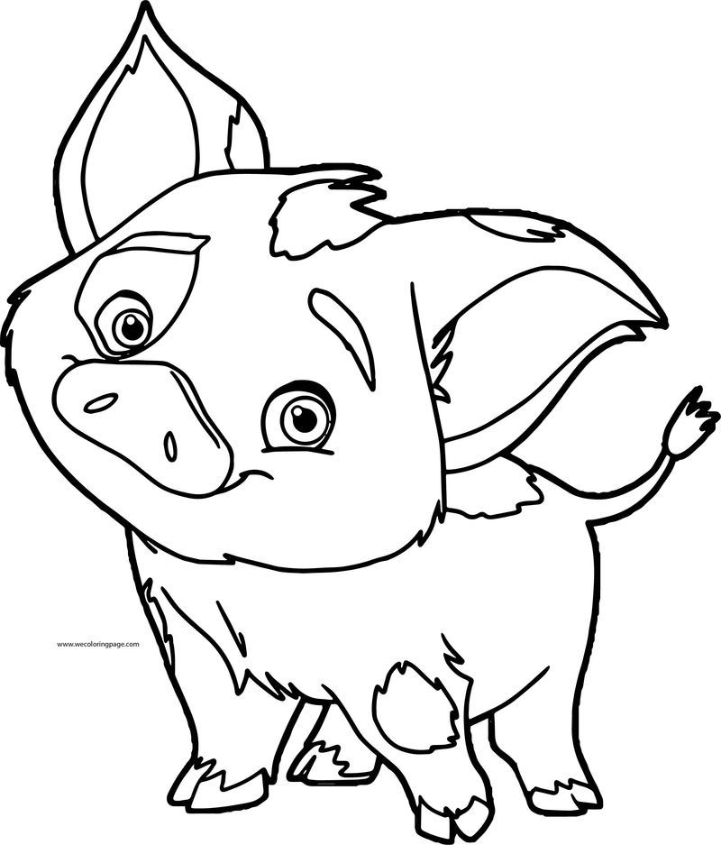 pig from moana coloring page pua pet pig from moana coloring page free printable page moana coloring pig from