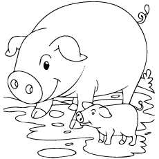 pig from moana coloring page pua pet pig from moana disney coloring pages printable moana from coloring page pig