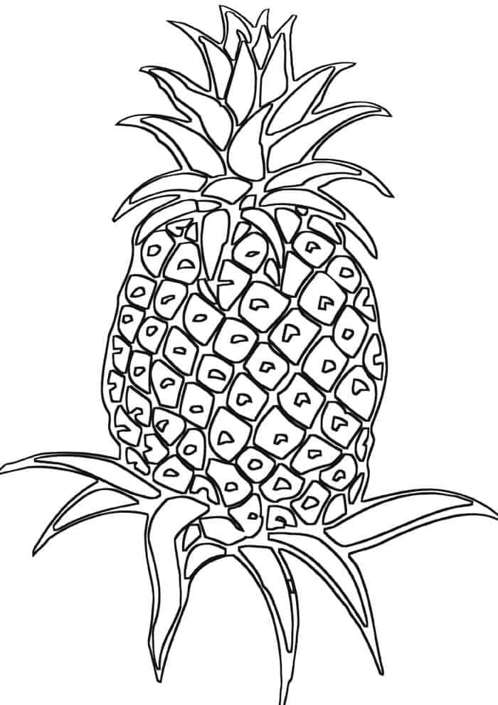 pineapple with sunglasses coloring page coloring page tropical stock illustrations 5349 coloring page pineapple with sunglasses