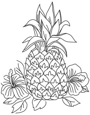 pineapple with sunglasses coloring page pineapple outline drawing at getdrawings free download page coloring sunglasses with pineapple