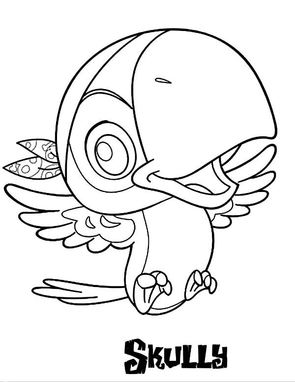 pirate parrot coloring pages parrot pirate coloring sheets for little kids pirate coloring pages parrot