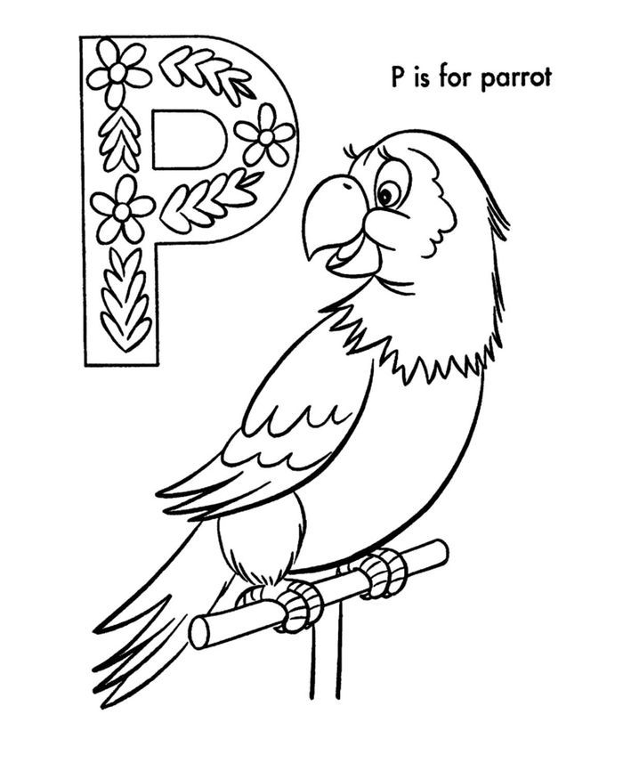pirate parrot coloring pages printable funny parrot coloring pages in 2020 pirate parrot coloring pages pirate