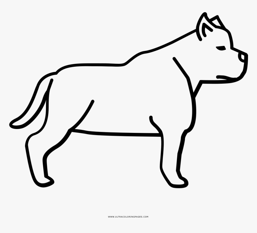 pitbull outline pictures 12 pics of pitbull coloring pages free pit bull puppy outline pictures pitbull