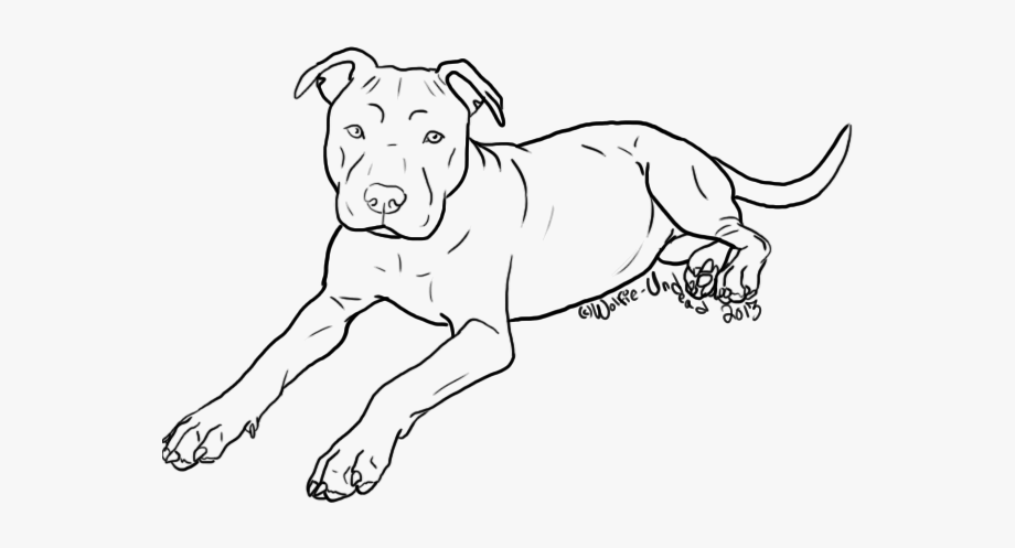 pitbull outline pictures 7 pit bull dog tattoo designs and stencils pictures pitbull outline