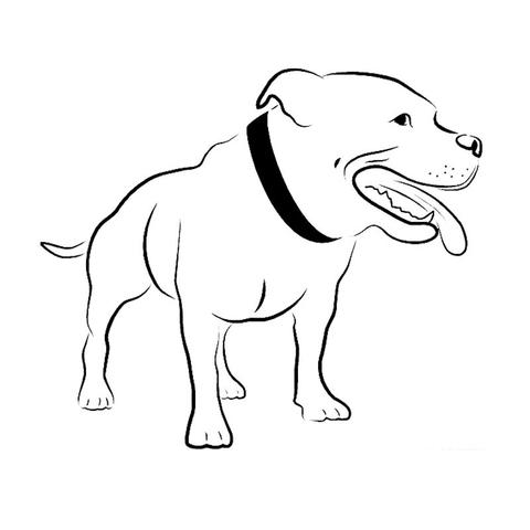 pitbull outline pictures american pit bull terrier puppy drawing line art pitbull outline pitbull pictures