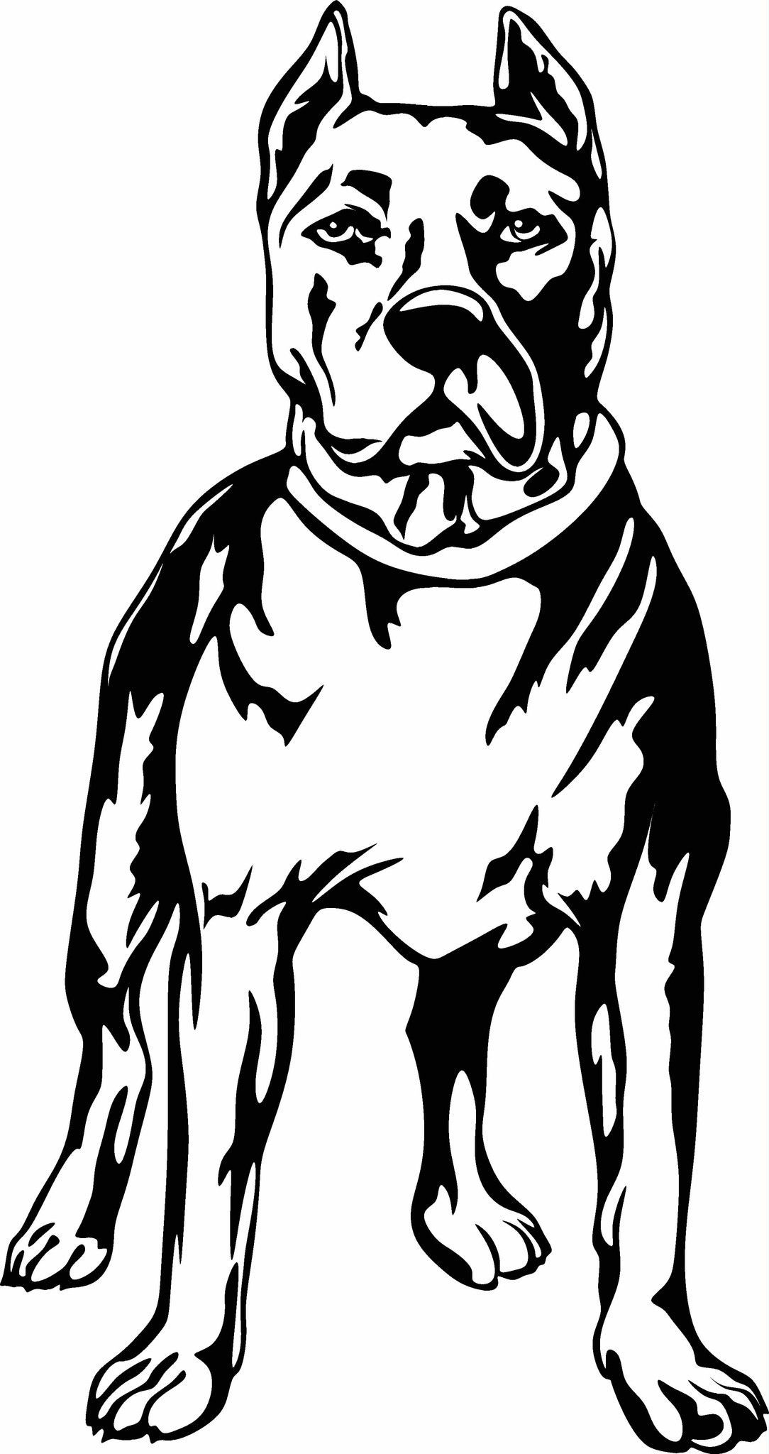 pitbull outline pictures outline of a pitbull free transparent clipart clipartkey pitbull pictures outline