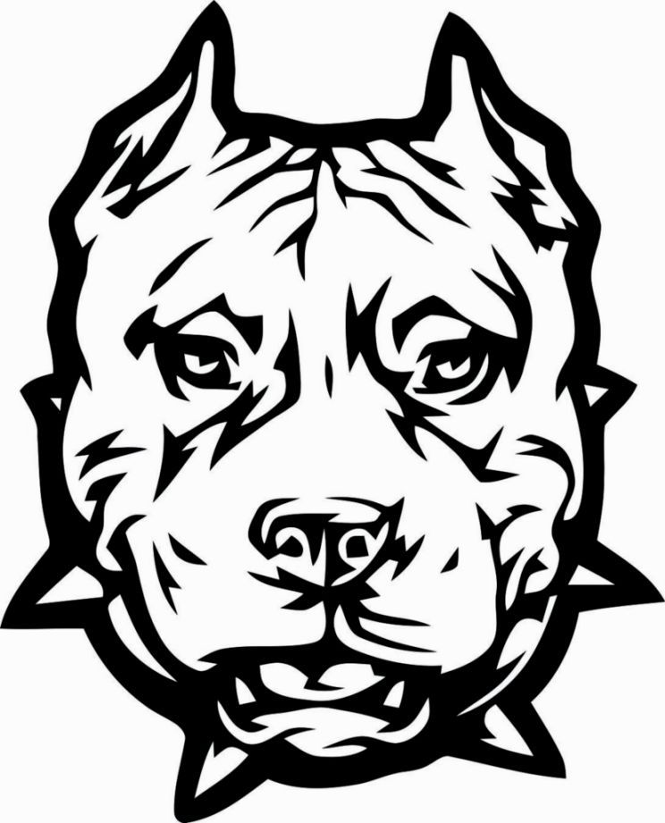 pitbull outline pictures pin by pictures pitbull outline