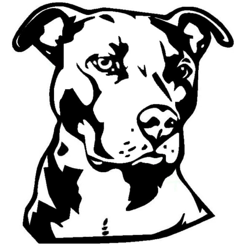 pitbull outline pictures pit bull pattern use the printable outline for crafts pitbull pictures outline