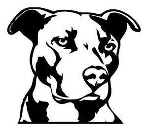 pitbull outline pictures pitbull coloring pages printable coloring home pictures pitbull outline