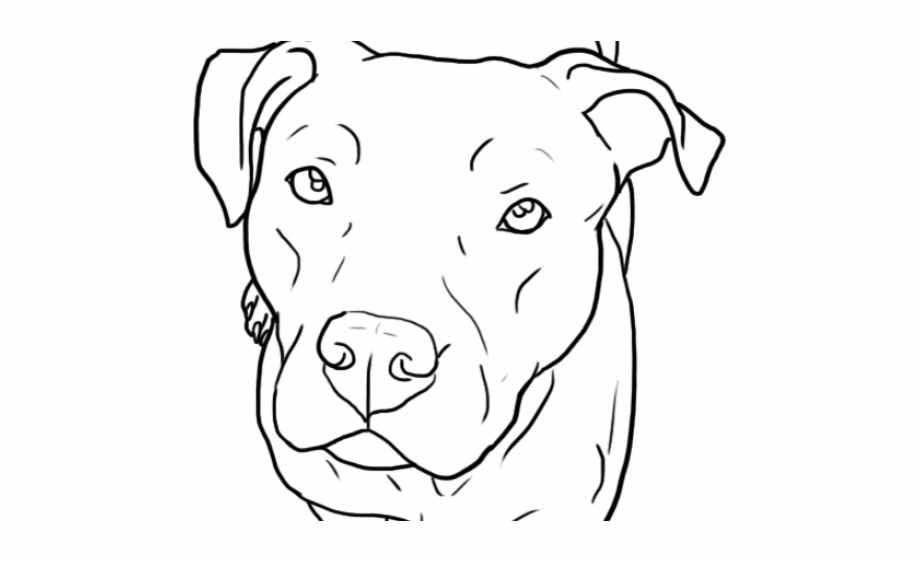 pitbull outline pictures pitbull mouth open drawing outline sticker 67quot x 57 pictures outline pitbull
